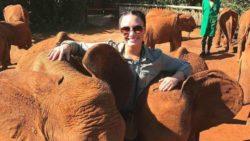 Imagen de Demi Lovato con elefantes