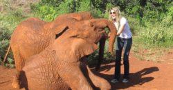 Imagen de Gisele Bundchen con elefantes