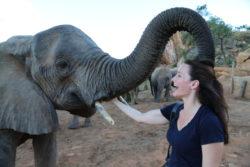 Imagen de Kristin Davis con elefantes