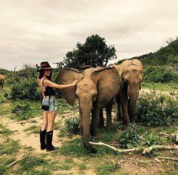 Imagen de Maggie Q con elefantes