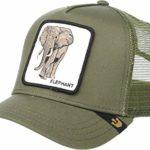 Gorras de elefantes